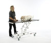 Veterinary Table